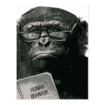 Chimp Reading Postcard