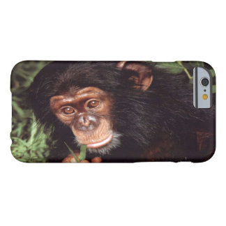 Chimpansee iPhone 6/6s Barely There iPhone 6 Case