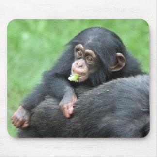 Chimpanzee 005 mouse pad