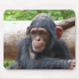 Chimpanzee_2015_0504 Mouse Pad