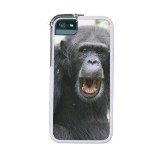 Chimpanzee iPhone 5 Case