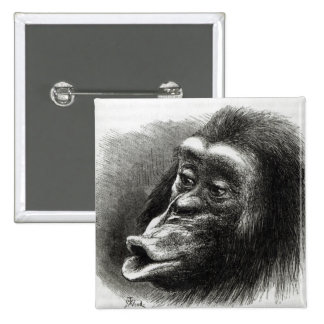 Chimpanzee Disappointed and Sulky 15 Cm Square Badge
