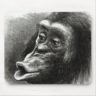 Chimpanzee Disappointed and Sulky Mouse Mat
