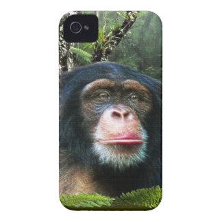 Chimpanzee Great Ape Wildlife Animal Phone Case Case-Mate iPhone 4 Cases
