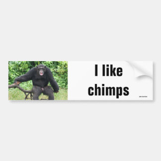 Chimpanzee in Africa Bumper Sticker