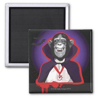 Chimpanzee in Dracula Costume Magnet
