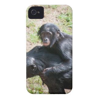 Chimpanzee iPhone 4 Case