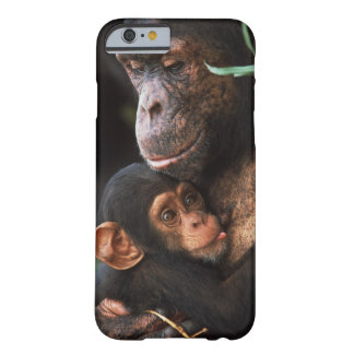 Chimpanzee Mother Nurturing Baby Barely There iPhone 6 Case
