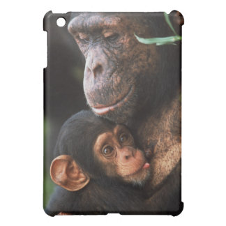 Chimpanzee Mother Nurturing Baby iPad Mini Covers