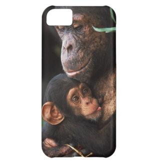 Chimpanzee Mother Nurturing Baby iPhone 5C Case