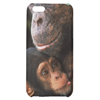 Chimpanzee Mother Nurturing Baby Cover For iPhone 5C