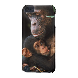 Chimpanzee Mother Nurturing Baby iPod Touch (5th Generation) Cases