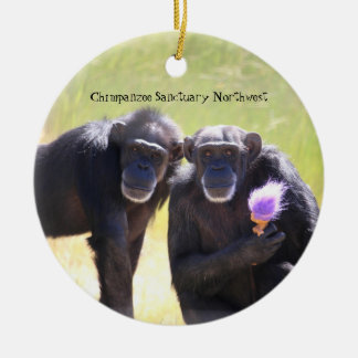 Chimpanzee Ornament - Annie & Foxie