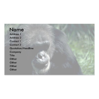 Chimpanzee Pack Of Standard Business Cards