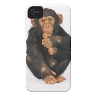 Chimpanzee (Pan troglodytes). Young playfull iPhone 4 Cover