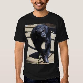 Chimpanzee Tees