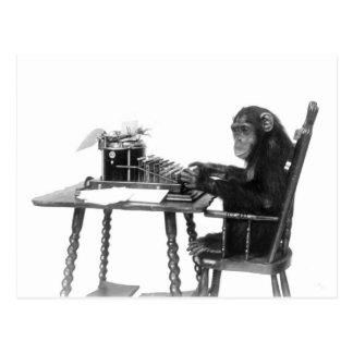 Chimpanzee typing postcard