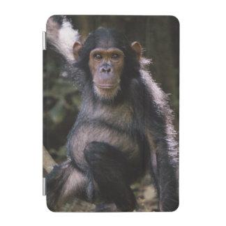 Chimpanzee Young Female iPad Mini Cover