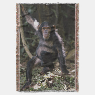 Chimpanzee Young Female Throw Blanket