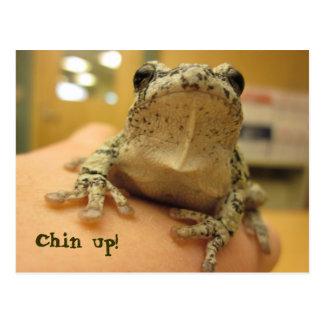 Chin up! postcard