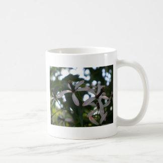 China Berry Flowers Mugs