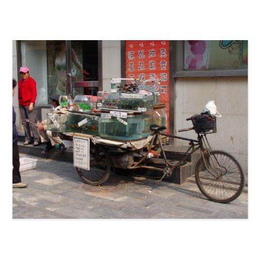 China Bicycle--selling fish Postcards