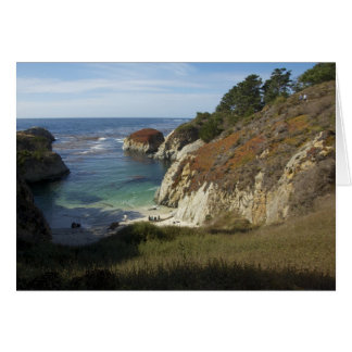 China Cove, Point Lobos Preserve Card