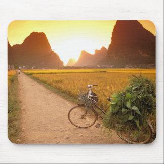 China, Guangxi. Yangzhou, Bicycle on country Mouse Mat