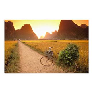 China, Guangxi. Yangzhou, Bicycle on country Photo Print