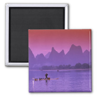 China, Guanxi. Li river single cormorant Magnet