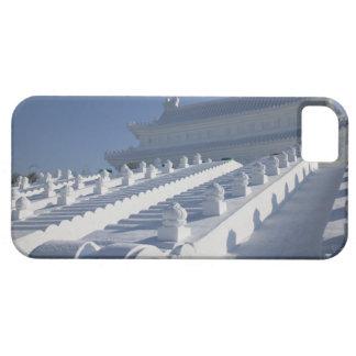 CHINA, Heilongjiang Province, Haerbin (Harbin). 2 Case For The iPhone 5