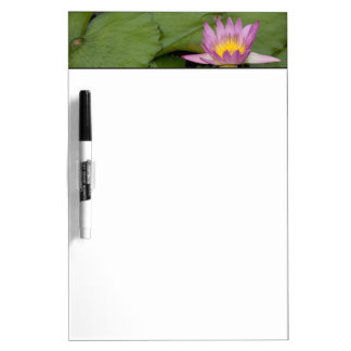 China, Hong Kong, New Territories. Chi Lin Dry Erase Board