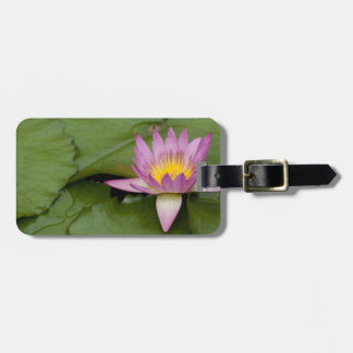 China, Hong Kong, New Territories. Chi Lin Luggage Tag