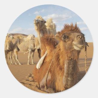 China, Inner Mongolia, Badain Jaran Desert 2 Classic Round Sticker