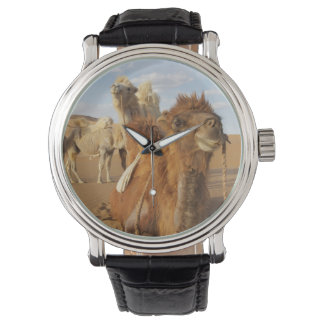 China, Inner Mongolia, Badain Jaran Desert 2 Wrist Watch