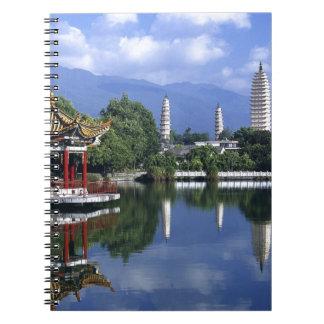 China Lake Notebooks
