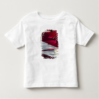 CHINA, Shanghai. French Concession Area- Toddler T-Shirt