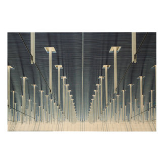 China, Shanghai | Pudong International Airport Wood Wall Art