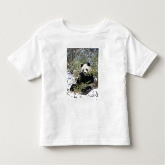 China, Sichuan Province. Giant Panda feeds on Toddler T-Shirt