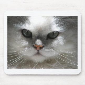 Chinchilla Persian Cat Mouse Pad