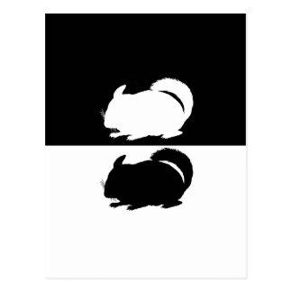 chinchilla postcard