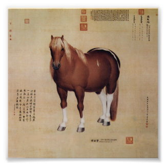 Chinese Ancient Papyrus With Horse Painting Photo Print