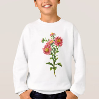 Chinese Asters Drawn From Nature Sweatshirt