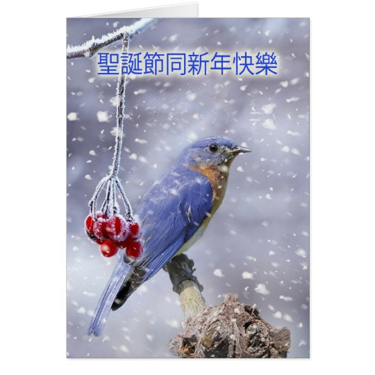 chinese christmas card - blue bird with berries an