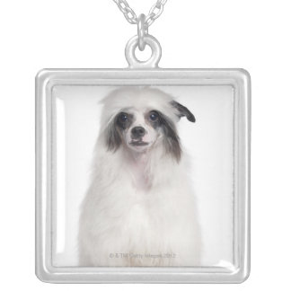 Chinese Crested Dog (7 months old) Silver Plated Necklace