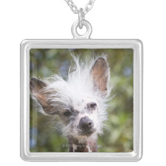 CHINESE CRESTED DOG (HAIRLESS) SILVER PLATED NECKLACE