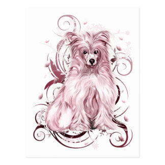 Chinese Crested Pink NB Postcard
