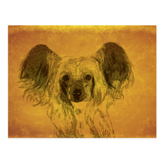Chinese Crested portrait, yellow Postcard
