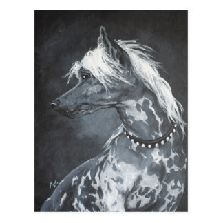 Chinese Crested Postcard