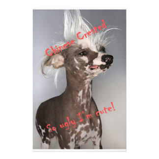 Chinese Crested So Ugly I'm Cute Stationery Design